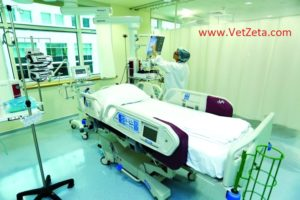 العناية المركَّزة في زمن الكورونا تساوي حياة ،سواء في المستشفيات العامة أو المستشفيات الخاصة.